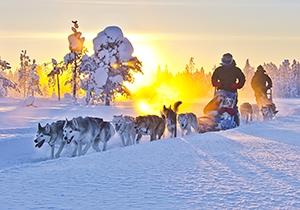 Lapland midweek promo! Inclusief all-in activiteiten en vluchten vanaf Amsterdam