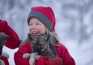 Unieke wintervakantie: Kerstmis in Lapland! Rij met een huskyslede in een onvergetelijk landschap. Vanaf € 1365
