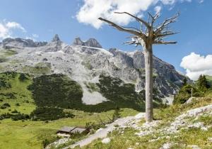 Topreis voor wandelaars: de Gauertaler Alpkultour is een themawandeling door een van de mooiste valleien van de Alpen!