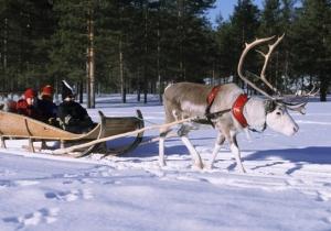 Ga 5 dagen op droomreis naar Lapland en beleef de sneeuwpret van je leven