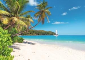 Skip je winterdip en plan nu al jouw winterzonvakantie. Jamaica, Tenerife, Egypte of Kaapverdië? Trakteer jezelf en ontspan!