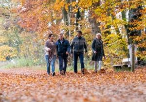 Gelderland is de groenste provincie van Nederland. Ontdek er gezellige stadjes, prachtige wandelingen en geniet van de gastvrijheid.